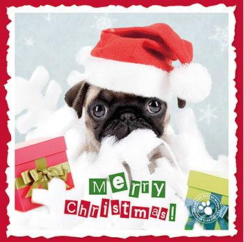 Tierische Weihnachtsgrüße.Hunderassen Weihnachtskarten Briefkarten Briefpapier Tierisch
