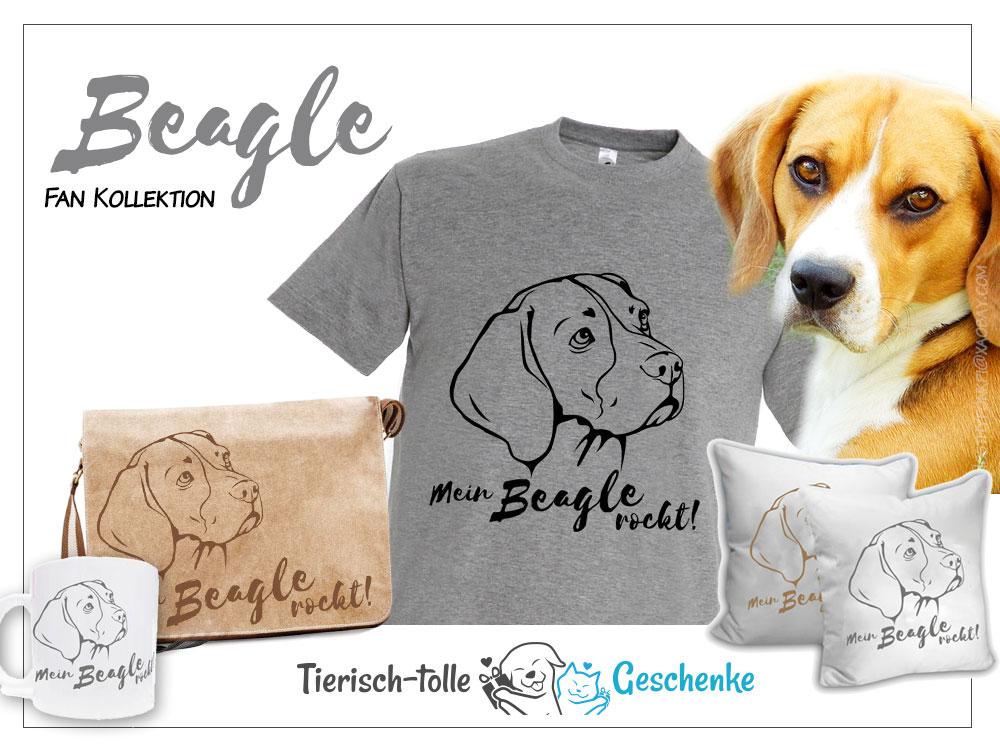 https://www.tierisch-tolle-geschenke.de/fuer-menschen/bekleidung-accessoires/hunderasse-fan-kollektion/beagle-fan-kollektion/