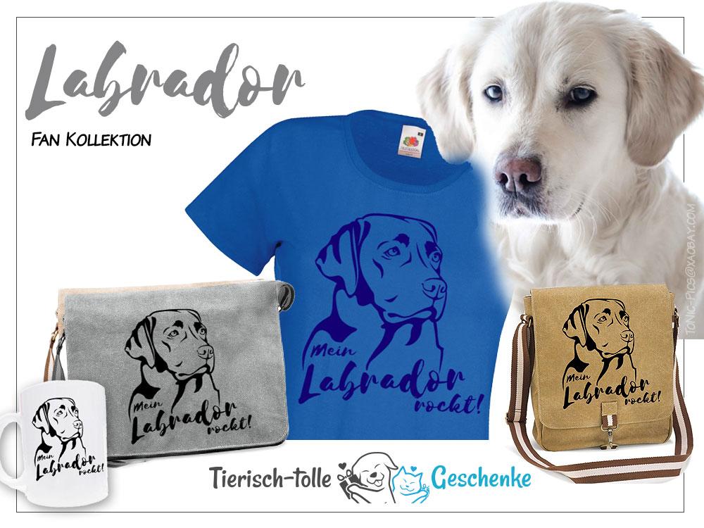 https://www.tierisch-tolle-geschenke.de/fuer-menschen/bekleidung-accessoires/hunderasse-fan-kollektion/labrador-fan-kollektion/