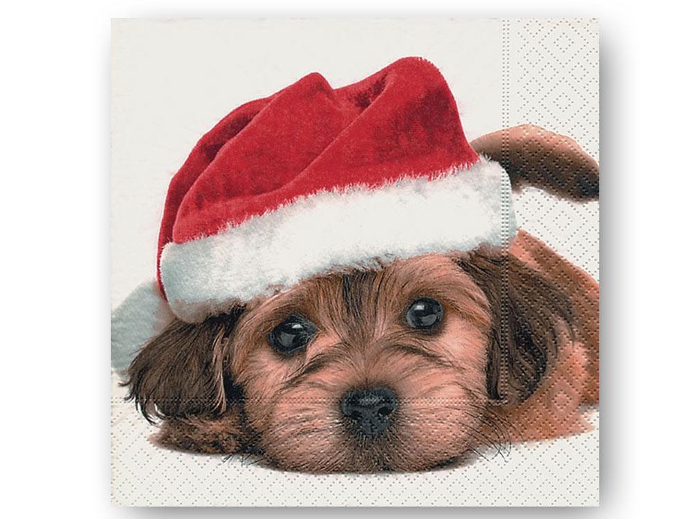 papier servietten hund weihnachten santa dog 20 stck 33. Black Bedroom Furniture Sets. Home Design Ideas