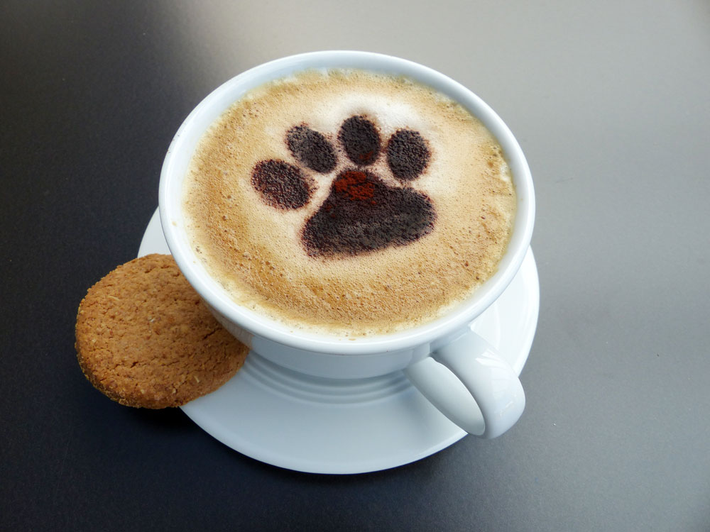 kaffee cappuccino schablone hunde katzen pfote tierisch tolle geschenke. Black Bedroom Furniture Sets. Home Design Ideas