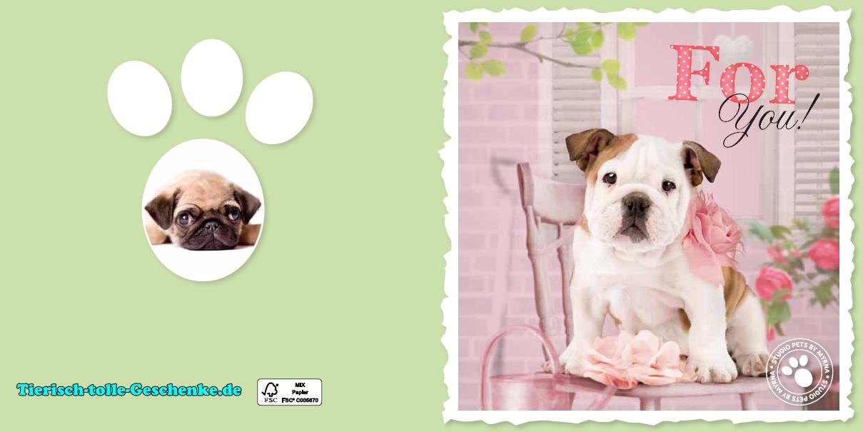 Myrna Grußkarte: Englische Bulldogge 3 - Tierisch-tolle-Geschenke
