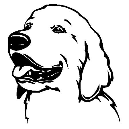 hunde wandtattoo: golden retriever 1 - tierisch-tolle