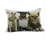 SchnäppchenCanvas Kissen: Chihuahua Trio