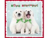 WeihnachtenMyrna Weihnachtskarte: Golden Retriever