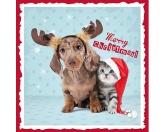 WeihnachtenMyrna Weihnachtskarte: Dackel 2