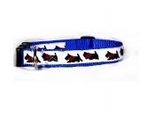 SchnäppchenHalsband-Leinen-Set: Scottish Terrier Weiss/Blau