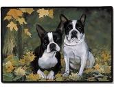 Tierische FußmattenDesigner Fußmatte: Boston Terrier