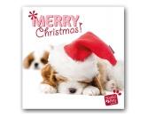 WeihnachtenMyrna Weihnachtskarte: Cavalier King Charles Spaniel Welpe