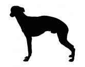 Taschen & RucksäckeCanvas Tasche HunderasseKreidetafel Hunderasse: Greyhound 2