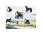WeihnachtenGeschenkpapier-Set: Best Friends -Berner Sennen Hund-