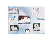 WeihnachtenGeschenkpapier-Set: Best Friends -Malteser-