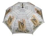 RestpostenYorkshire Terrier Mädchen - Regenschirm