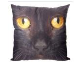 SchnäppchenKissen: schwarze Katze 50 x 50 cm mit Füllung
