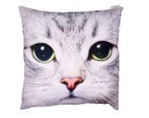 SchnäppchenKissen: weisse Katze 50 x 50 cm