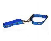 SchnäppchenHalsband-Leinen-Set: Agility Medium Blau