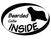 AusstellungszubehörHunderassen Ringclips vergoldetInside Aufkleber: Bearded Collie 2