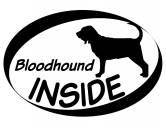 Socken mit TiermotivSocken mit HundemotivInside Aufkleber: Bloodhound