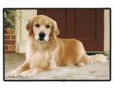 Tierische FußmattenDesigner Fußmatte: Golden Retriever