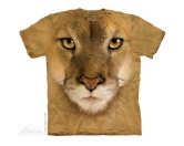 Löwe - Mountain Lion Face -L- Einzelstück