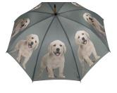 DuftbäumeHundemotiv DuftbäumeHund Design Regenschirm: Labrador Welpe blond