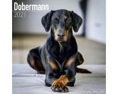 Taschen & RucksäckeCanvas Tasche HunderasseDobermann - Hundekalender 2021 by Avonside