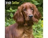 Schmuck & AccessoiresHunderassen-Broschen vergoldetIrish Setter - Hundekalender 2021 by Avonside