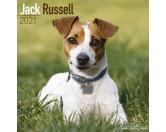 Bekleidung & AccessoiresHausschuhe & PantoffelnJack Russel Terrier - Hundekalender 2021 by Avonside