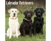 Für MenschenHunde Motiv Handtuch -watercolour-Labrador Retriever mixed - Hundekalender 2021 by Avonside