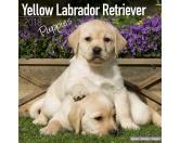 Taschen & RucksäckeCanvas Tasche HunderasseLabrador gelb - Hundekalender 2018 by BrownTrout