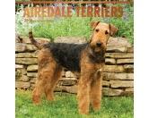 BrownTrout Hunde Kalender 2018Browntrout Hunde Wandkalender 2018: Airedale Terrier