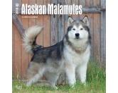 BrownTrout Hunde Kalender 2018Browntrout Hunde Wandkalender 2018: Alaskan Malamute