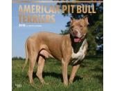 BrownTrout Hunde Kalender 2018Browntrout Hunde Wandkalender 2018: American Pitbull Terrier