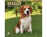 BrownTrout Hunde Kalender 2018Browntrout Hunde Wandkalender 2018: Beagle