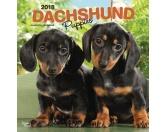 Taschen & RucksäckeGeldbörsen & HandytaschenDachshund - Dackel Welpen - Hundekalender 2018 by BrownTrout
