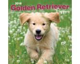 BrownTrout Hunde Kalender 2018Browntrout Hunde Wandkalender 2018: Golden Retriever Puppies - Welpen