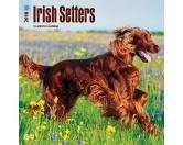 BrownTrout Hunde Kalender 2018Browntrout Hunde Wandkalender 2018: Irish Setter