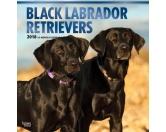BrownTrout Hunde Kalender 2018Browntrout Hunde Wandkalender 2018: Labrador Retriever schwarz