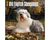 BrownTrout Hunde Kalender 2018Browntrout Hunde Wandkalender 2018: Old English Sheepdog - Bobtail