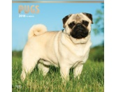 BrownTrout Hunde Kalender 2018Browntrout Hunde Wandkalender 2018: Pug - Mops