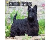BrownTrout Hunde Kalender 2018Browntrout Hunde Wandkalender 2018: Scottish Terrier
