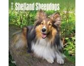 BrownTrout Hunde Kalender 2018Browntrout Hunde Wandkalender 2018: Shetland Sheepdog