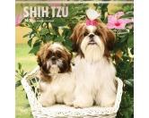 BrownTrout Hunde Kalender 2018Browntrout Hunde Wandkalender 2018: Shih Tzu