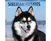 BrownTrout Hunde Kalender 2018Browntrout Hunde Wandkalender 2018: Siberian Husky