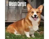 BrownTrout Hunde Kalender 2018Browntrout Hunde Wandkalender 2018: Welsh Corgi
