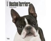BrownTrout Hunde Kalender 2018Browntrout Hunde Wandkalender 2018: Boston Terrier