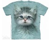 The Mountain Shirt: Katze - Blue Eyes Kitten
