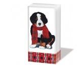 WeihnachtenPapier-Taschentücher: Noah - Xmas Berner Sennenhund