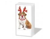 WeihnachtenPapier-Taschentücher: Xmas Bulldogge - Weihnachten