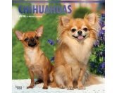 BrownTrout Hunde Kalender 2018Browntrout Hunde Wandkalender 2018: Chihuahua